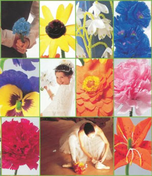Tissue Paper Flowers Book