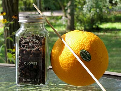Oranges and Cloves for Pomanders