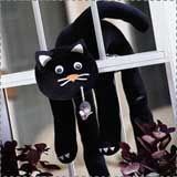 Trapped Black Cat Craft