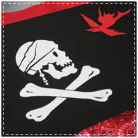 Stenciled Pirate Flag Project