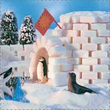 Winter Igloo Craft
