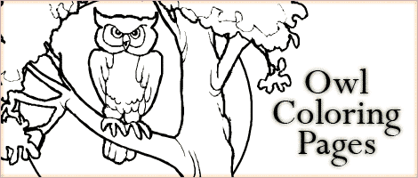 owl coloring pages la woo jr kids activities