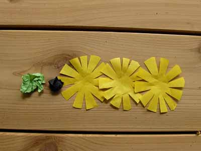 Paper Black Eyed Susan Flower Parts