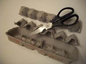 Cut off one section of the egg carton to make the caterpillar's body.