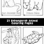 Endangered Animals Coloring Pages: Animals from North America, the Rainforest & the Ocean