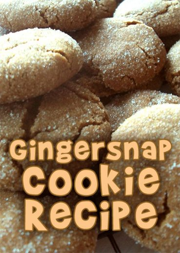 Gingersnap Recipe to Make with Kids