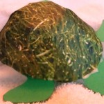 3-D Paper Turtle Craft