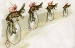 Bicycling Easter Bunnies