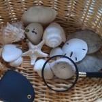 Preschool Science Lesson: Nature Observation Baskets