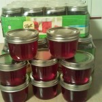 Home Made Jelly without the Corn Syrup!