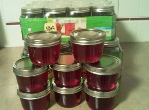 Home Made Jelly in Less than an Hour