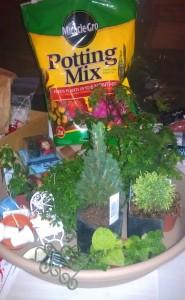 Fairy Garden Craft Supplies