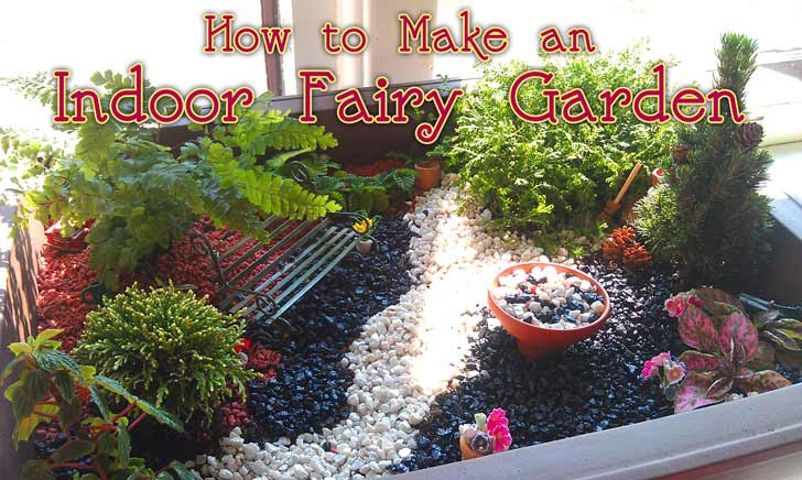 Delicieux How To Plant A Fairy Garden
