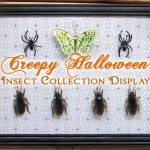 Creepy (and Super EASY) Halloween Insect Collection Display