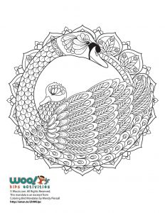 Beautiful Swan Mandala Adult Coloring Page