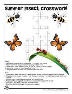 Summer Insects Crossword Puzzle for Kids
