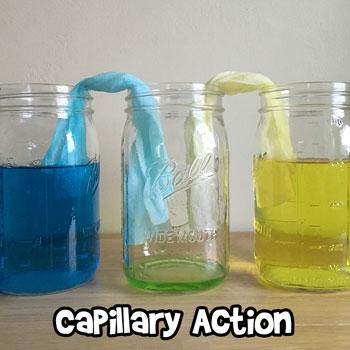 Understanding Capillary Action for Kids