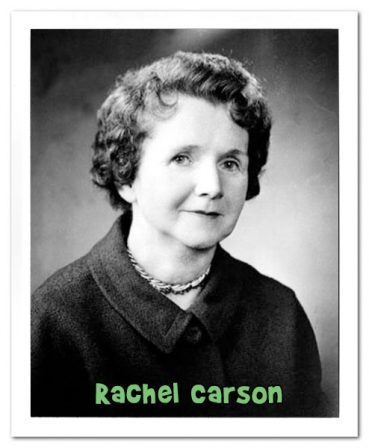 a biography of rachel lousie carson born on a farm in springdale Rachel carson was a biologist, writer who hailed from america, and she was also a member of the 'conservation movement' this biography provides detailed information about her childhood, profile, career and timeline.