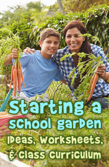 Start a Garden at Your School – Ideas, Worksheets & Curriculum
