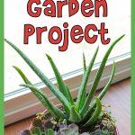 Mini Succulent Garden Project