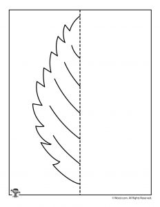 Fall Elm Leaf Symmetry Practice Worksheet