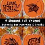 9 Elegant Fall Stencils for Pumpkins and Crafts