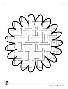 Daisy Flower Maze