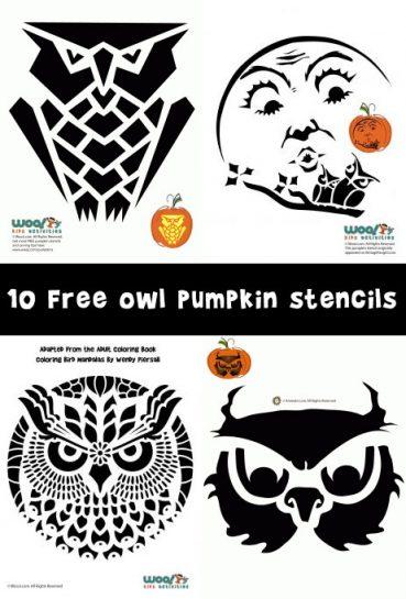 Owl Pumpkin Carving Stencils