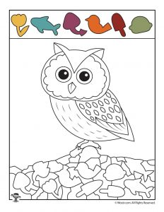 Fall Owl Hidden Picture Activity Page