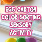 Egg Carton Color Sorting Sensory Activity