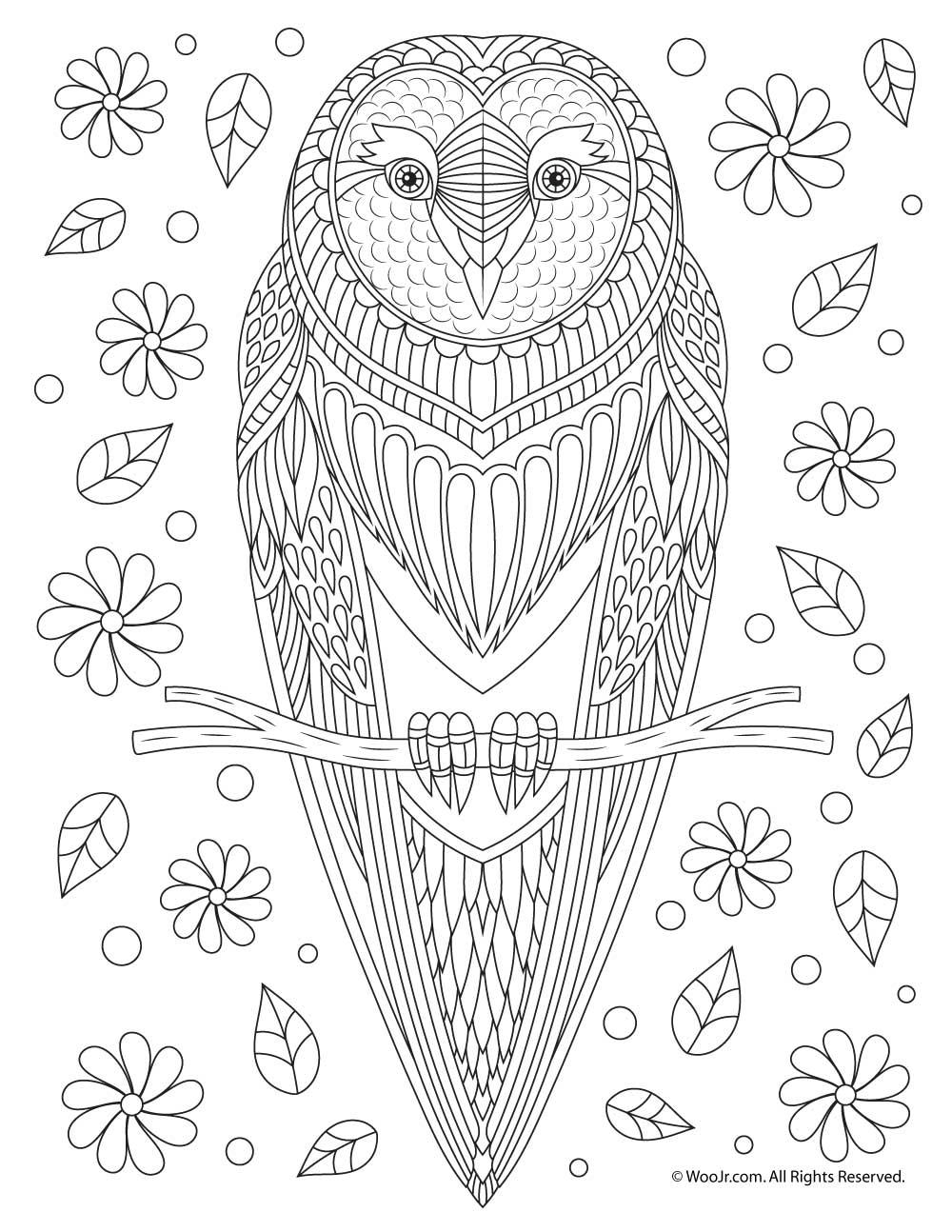 Owl Adult Coloring Page | Woo! Jr. Kids Activities