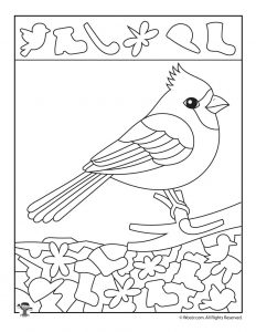 Cardinal Bird Find the Item Worksheet