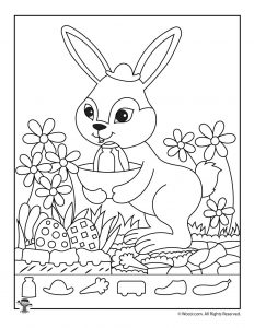 Easter Bunny Hidden Picture Activity Page