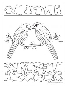 Love Birds Find the Item Activity