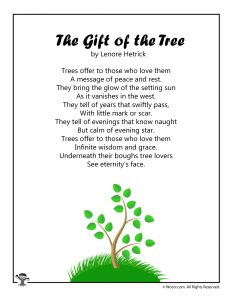 The Gift of the Tree Children's Poetry