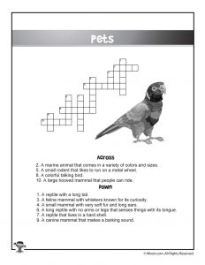 Pets English Crossword Puzzle