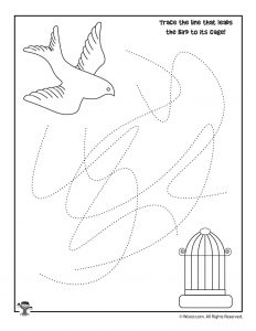 Lead the Bird to the Cage - Tracing Activity