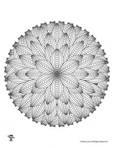 Flower Mandalas Adult Coloring Page