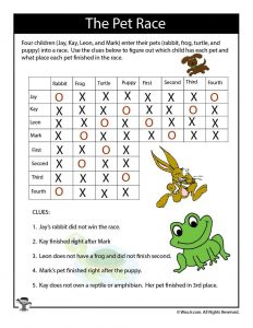 Pets Expert Logic Puzzle - ANSWERS