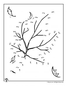 Autumn Leaf Dot to Dot Activity