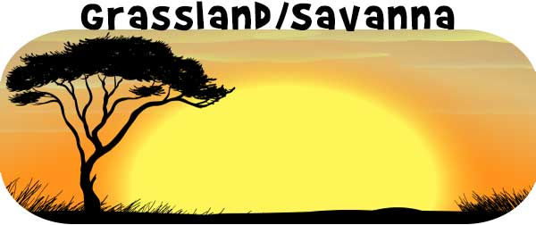 Grassland & Savanna Biomes