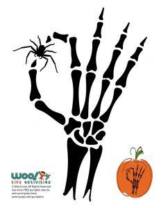 Spider and Skeleton Pumpkin Carving