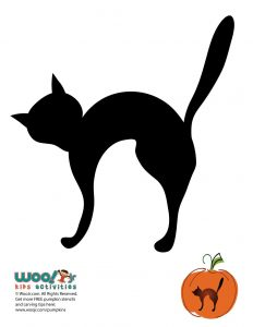 Halloween Cat Pumpkin Pattern