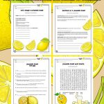 Business for Kids: How to Run a Lemonade Stand