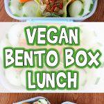 Vegan Bento Box Lunch