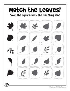 Fall Leaf Shape Recognition Printable
