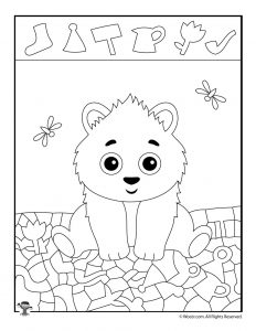Polar Bear Hidden Picture Activity Page