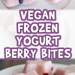 Vegan Frozen Yogurt Berry Bites