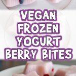 Vegan Frozen Yogurt Berry Bites
