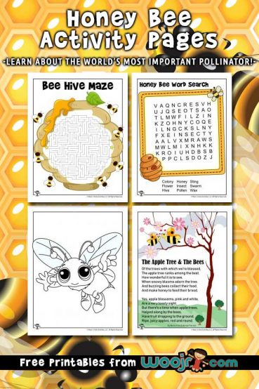 Honey Bee Activity Pages